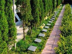 北京哪里有树葬陵园?