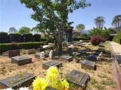 昌平有哪些墓地可以选择树葬