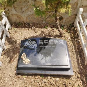 功泽园树葬(黑)