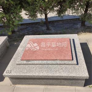 福聚苑卧碑