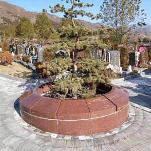 京华园树葬